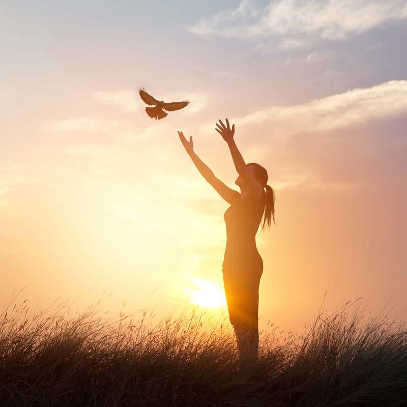 Dove Release into sky